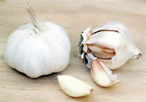 Garlic_foodguruz.in