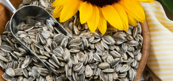 How Healthy are Sunflower Seeds