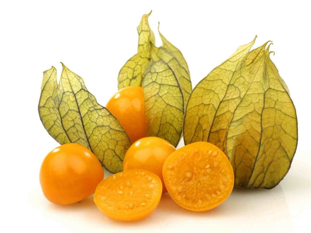 physalis_foodguruz.in