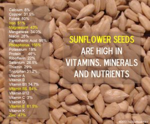 organic-sunflower-seeds-vitamins-nutrients_foodguruz.in_