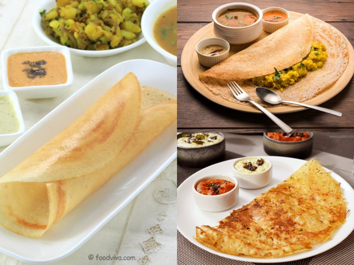 DOSA - HEART OF SOUTH INDIA 1